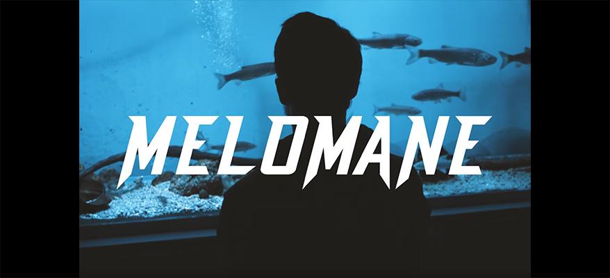 0- SLIDE MELOMANE